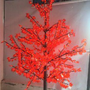 עצי לד למכירה